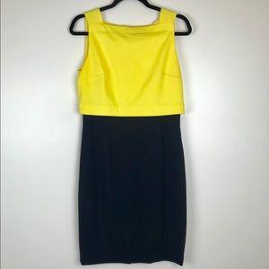 Ralph Lauren Colorblock Shift Dress